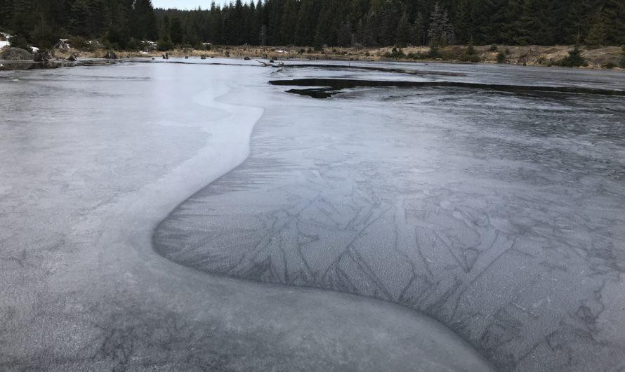 Led nalezen