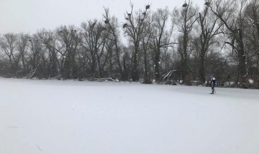 Sněžení a co dál?
