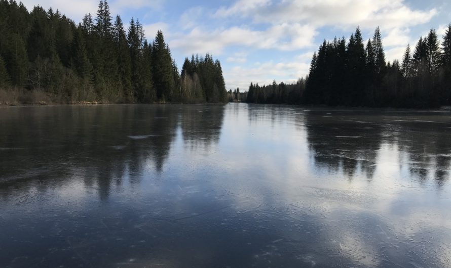 Zimáky zavřeny, přírodní ledy otevřeny